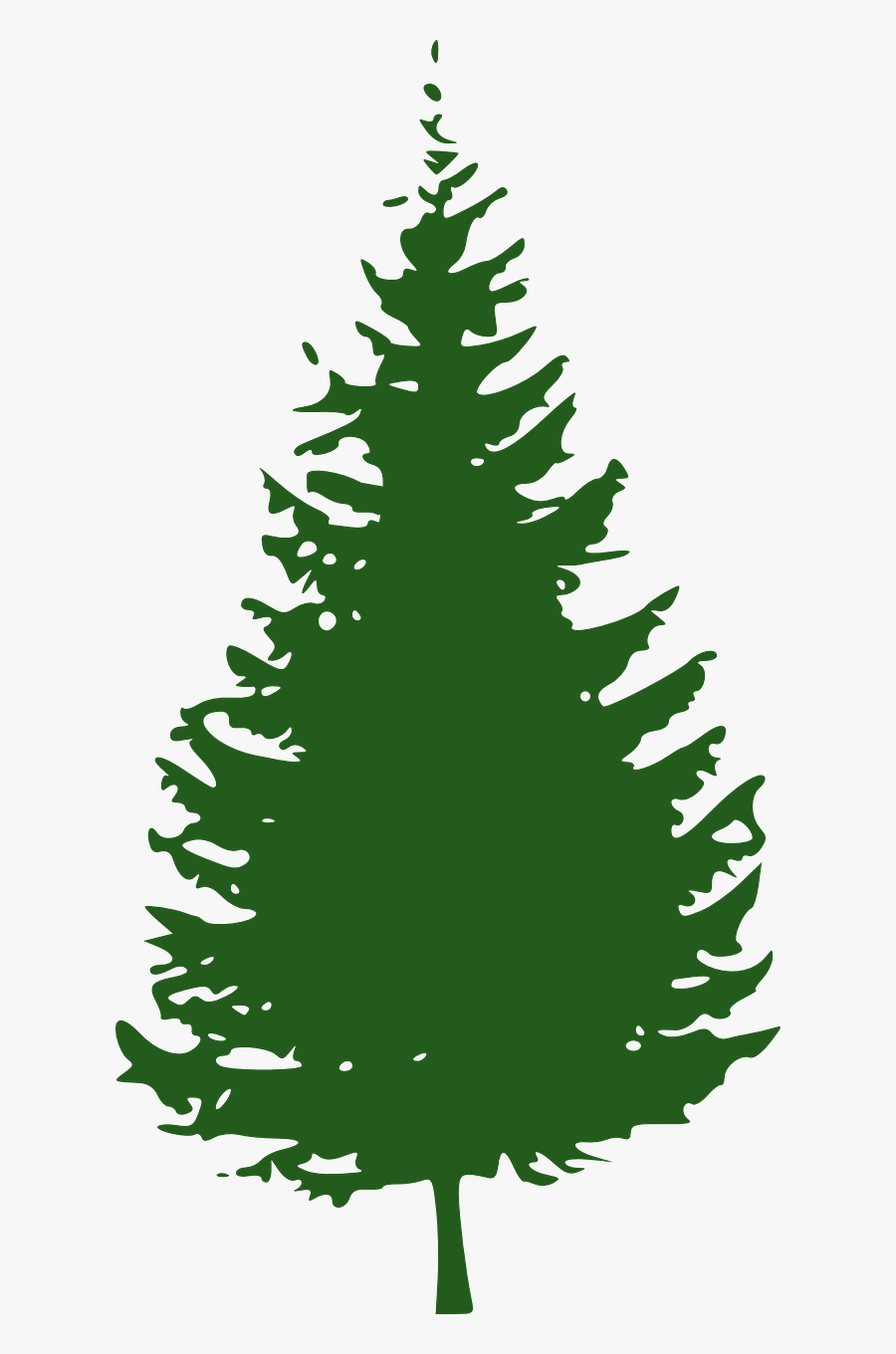 Transparent Forest Png - Pine Tree Clipart Free, Transparent Clipart