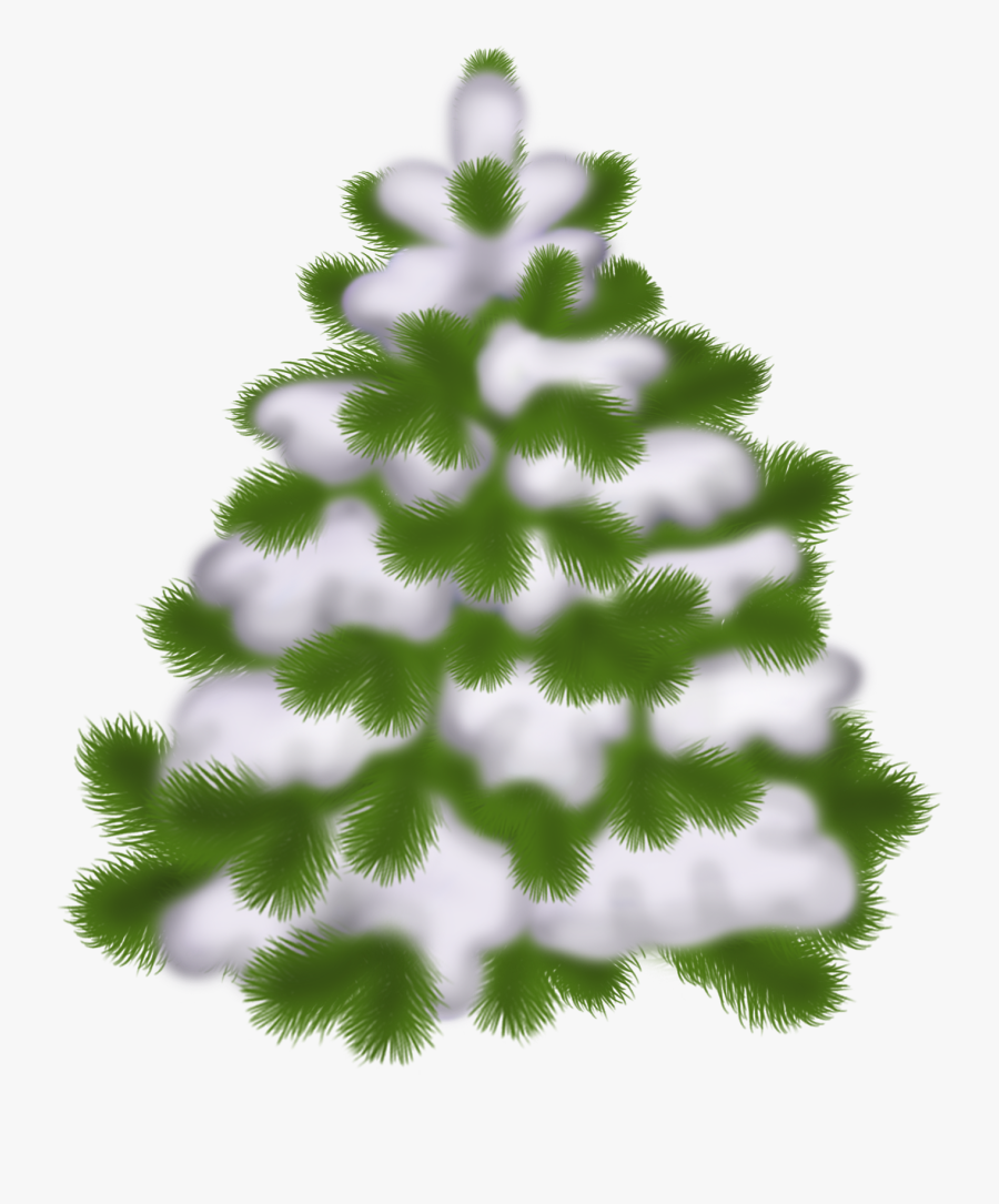 Transparent Christmas Tree Winter, Transparent Clipart