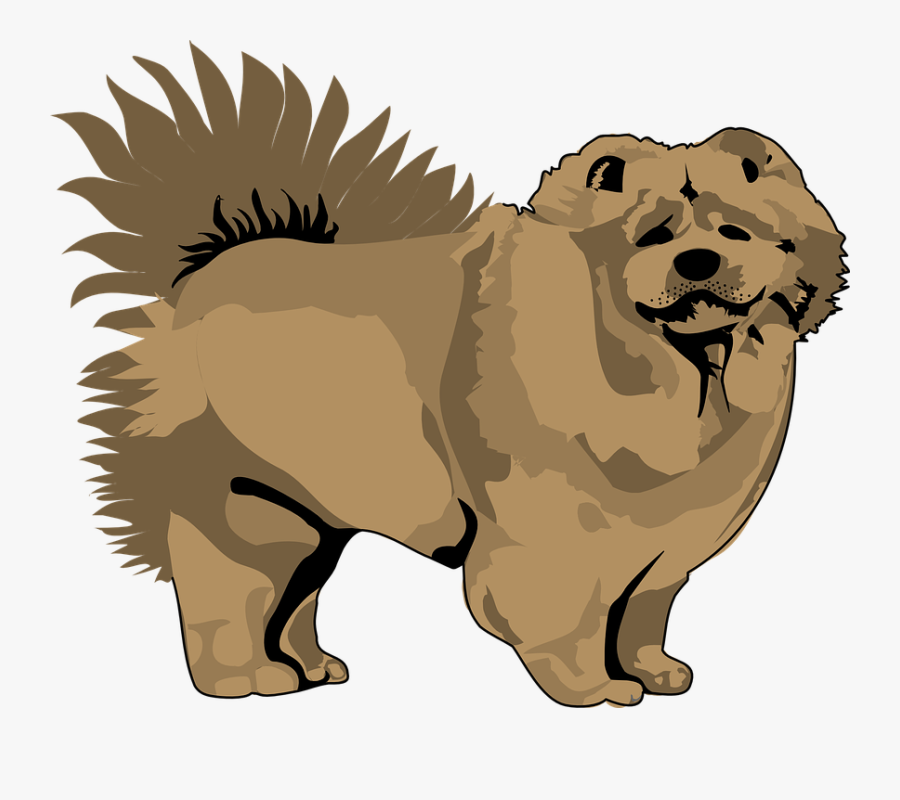 Pet Clipart Animal Fur - Chow Chow Vector Png, Transparent Clipart