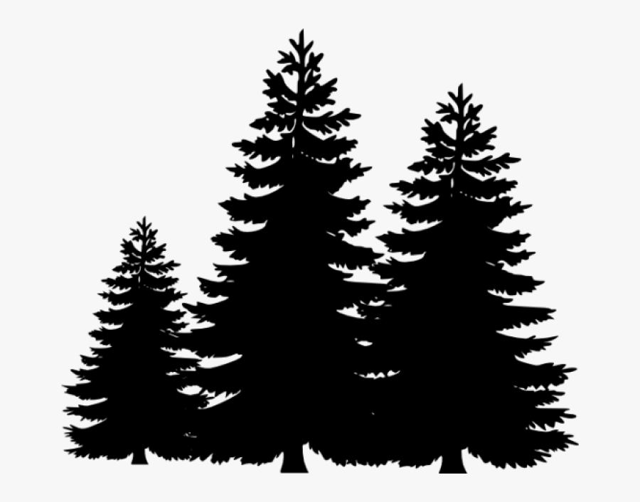 Permalink To Pine Tree Clip Art Winter Clipart - Pine Tree Svg Free, Transparent Clipart