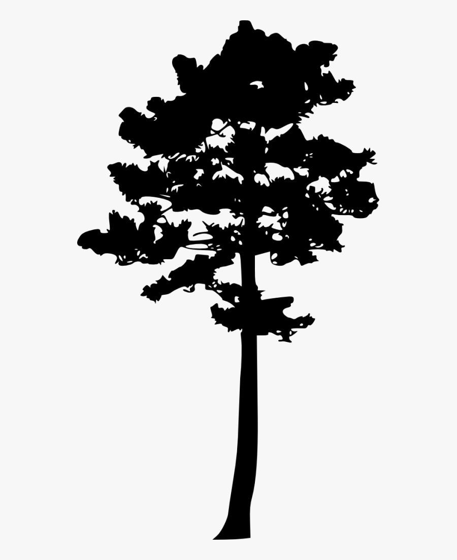 Pine Tree Silhouette Png - Tree Silhouette Pine Png, Transparent Clipart