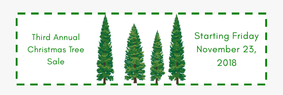 Christmas Tree Sale At The Conshohocken Free Library - Pine Tree Vector Png, Transparent Clipart