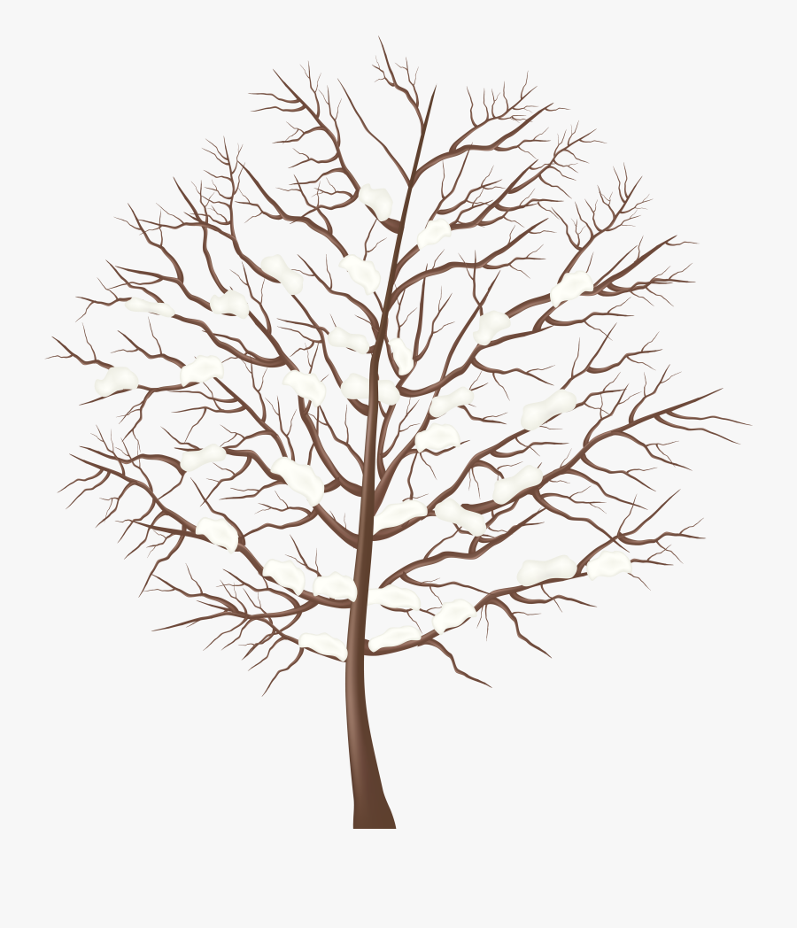 Winter Tree Clipart Png - Winter Tree Clipart Transparent Background, Transparent Clipart