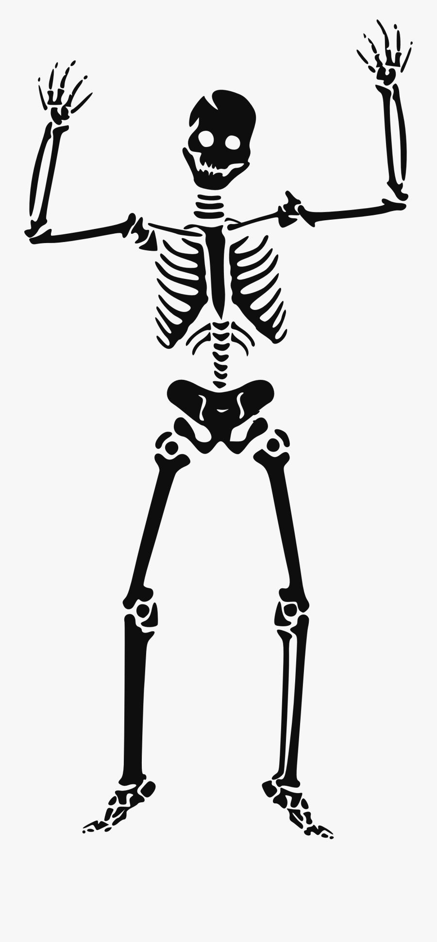 Skeleton Clipart Transparent - Halloween Clipart Skeleton, Transparent Clipart