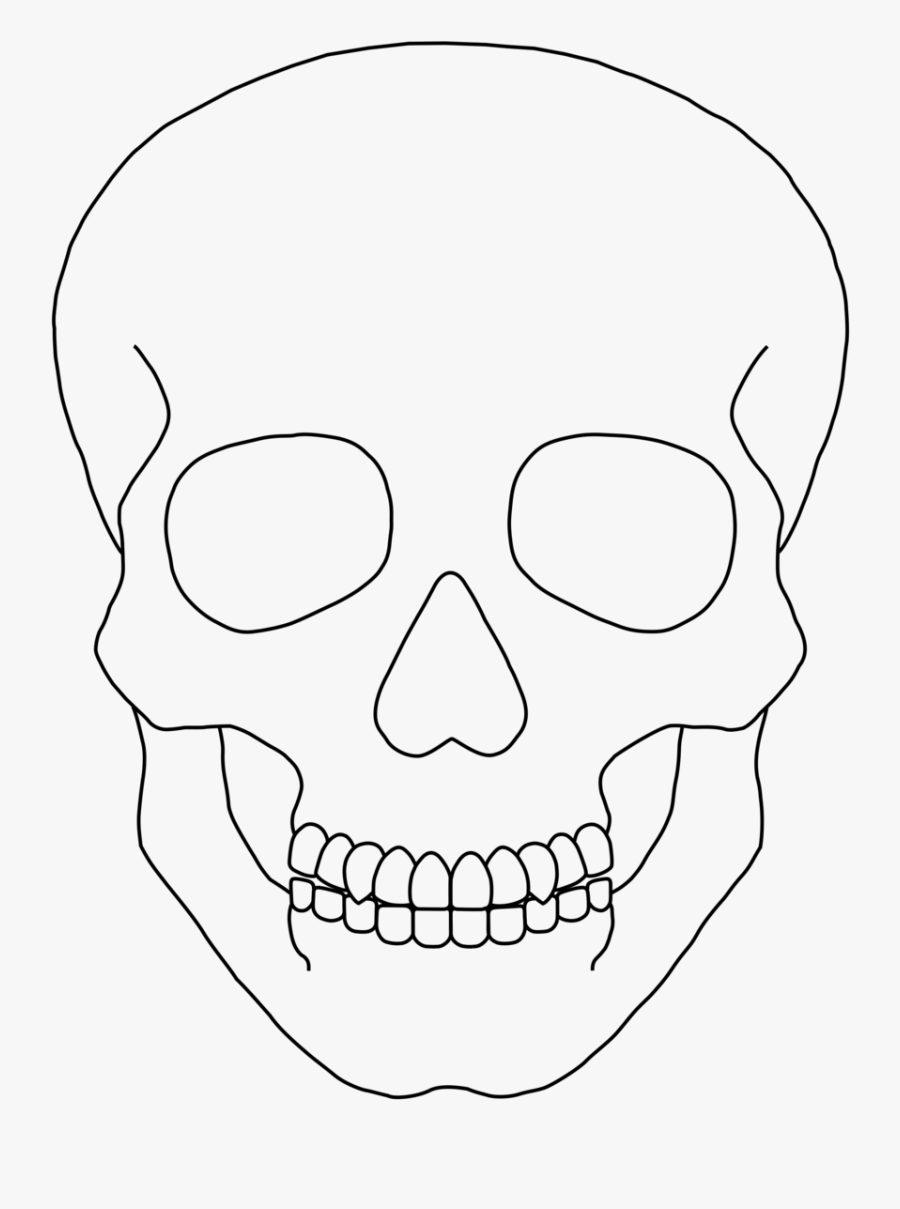 Skeleton Clipart Plain - Simple Human Skull Drawing, Transparent Clipart