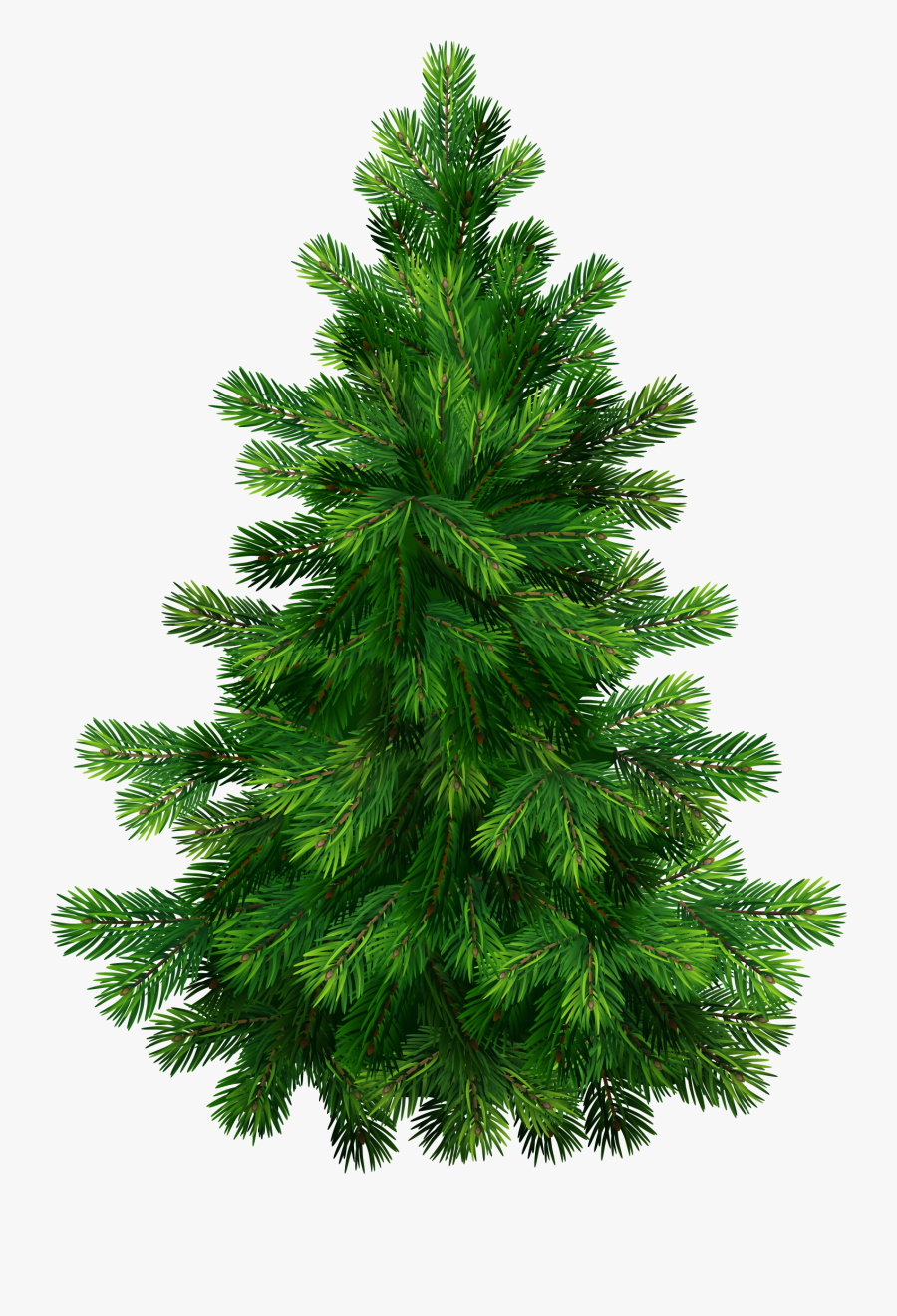 Pine Tree Clipart Png - Pine Tree Transparent Background, Transparent Clipart