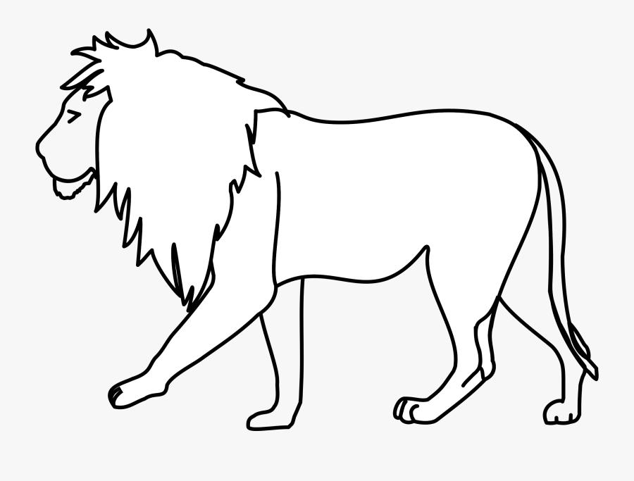 Carnivoran,beak,lion - Line Art Of Lion, Transparent Clipart