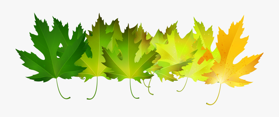 Green Autumn Leaves Transparent Clip Art Image - Green Fall Leaves Clip Art, Transparent Clipart