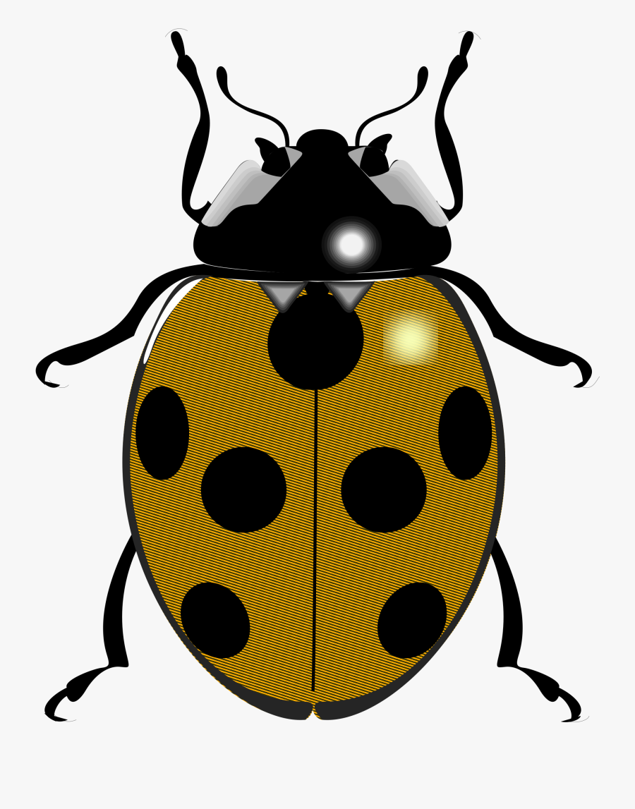 - Transparent Ladybug Clip Art - Things That Begin With The Letter L