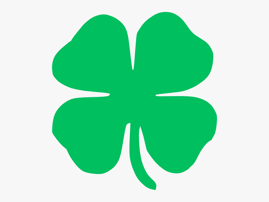 Four Leaf Clover, Transparent Clipart