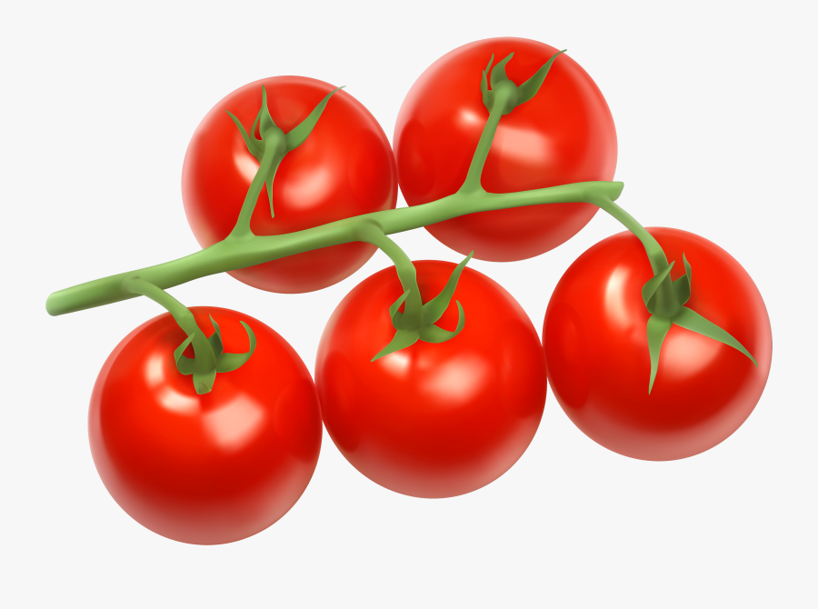 Tomatoes Branch Png Clipart - Tomatoes Clipart Png, Transparent Clipart