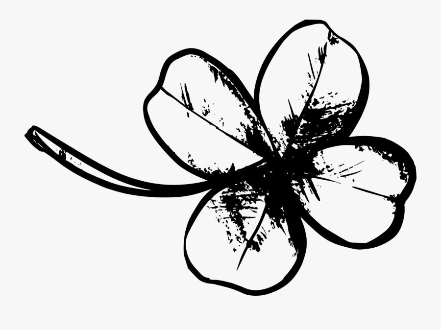 Clover, Four Leaf Clover, Plant, Patrick, Luck - Black Four Leaf Clover Png, Transparent Clipart