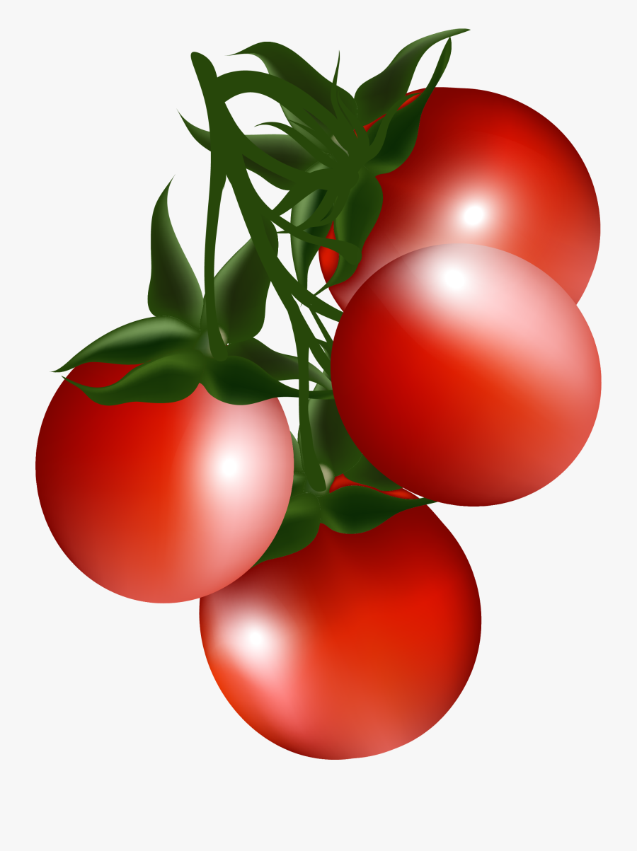 Cherry Tomato Bush Tomato Clip Art - Vegetables Png Pictures Clipart, Transparent Clipart