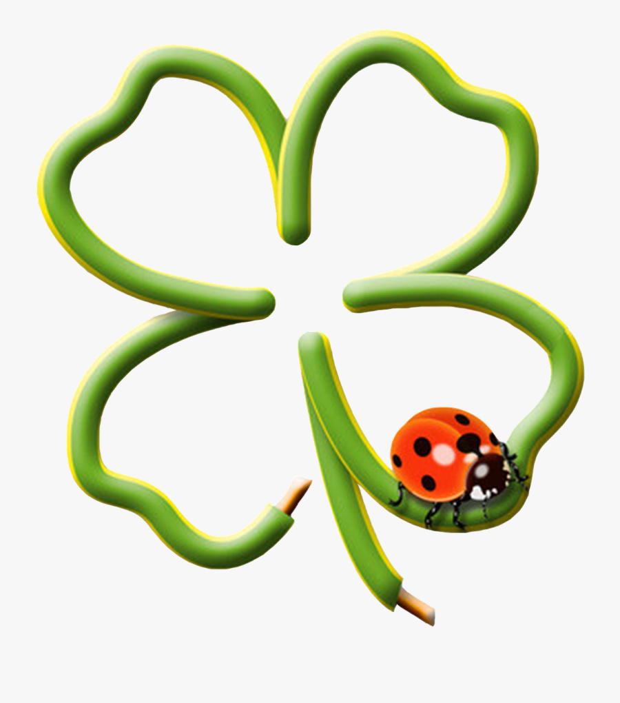Four Leaf Clover, Wire, Shaped, Luck, Lucky Ladybug - Four Leaf Clover With Ladybug, Transparent Clipart