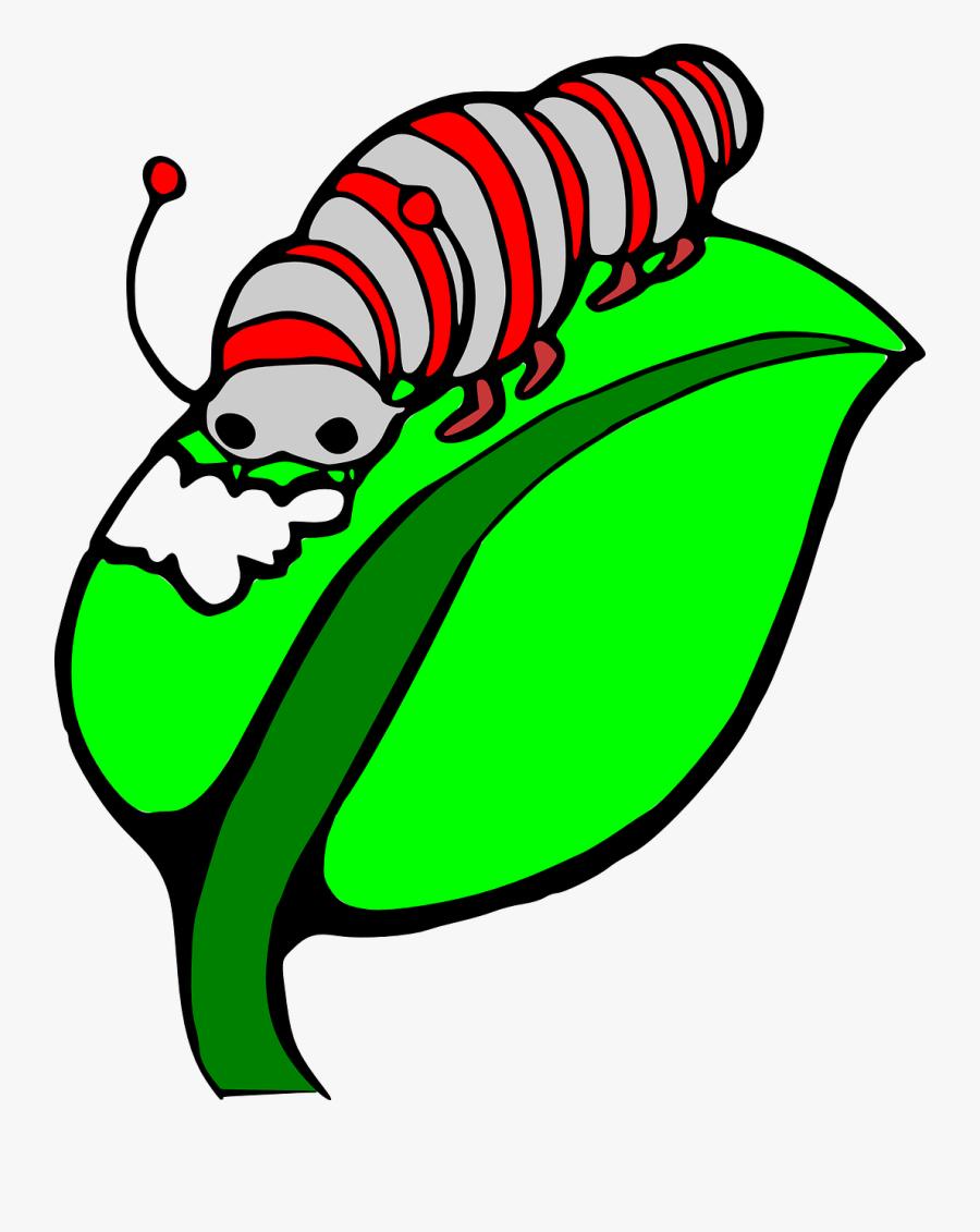 Caterpillar On A Leaf Clipart Panda Free Images- - Caterpillar On A Leaf Clipart, Transparent Clipart