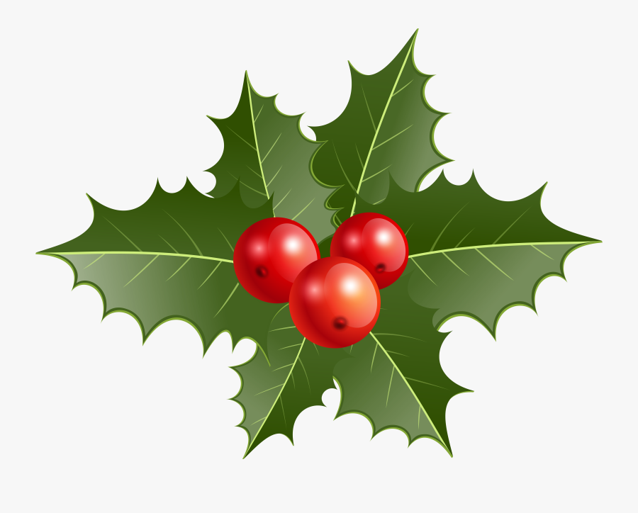 Holly Clipart, Transparent Clipart