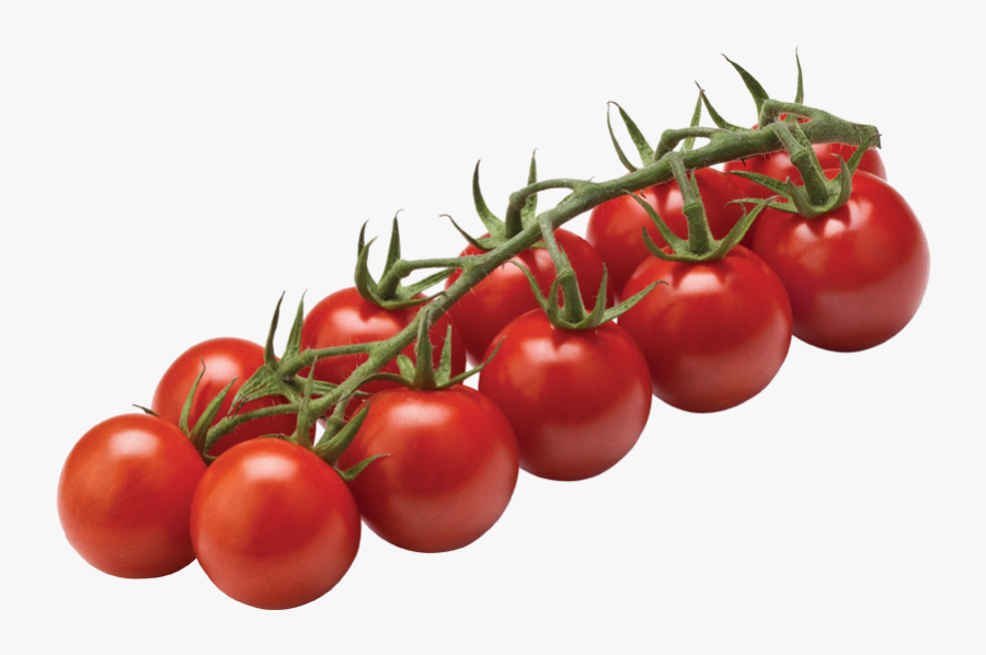 Tomato Cherry On Vine Clipart , Png Download - Tomato Cherry On Vine, Transparent Clipart