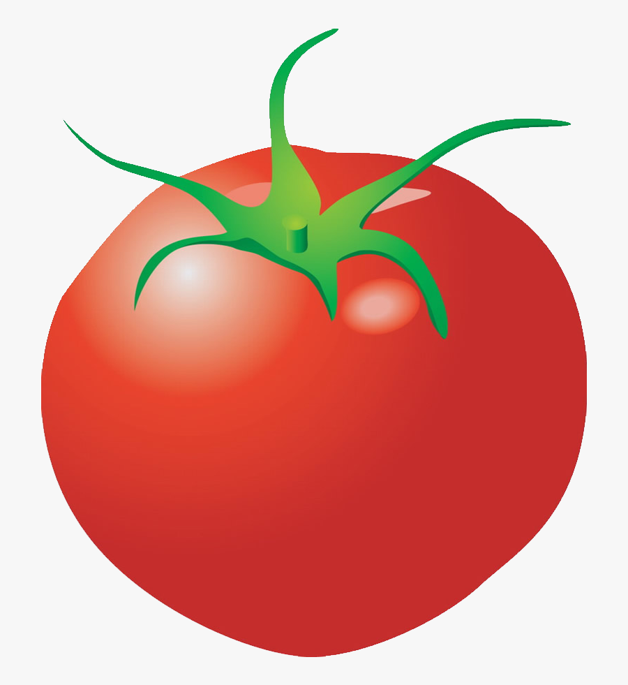 Plum Tomato Cartoon Clip Art - Individual Pictures Of Vegetables, Transparent Clipart