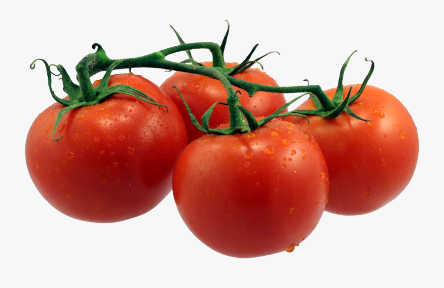 Tomatoes Png - Single Fruits And Vegetables, Transparent Clipart