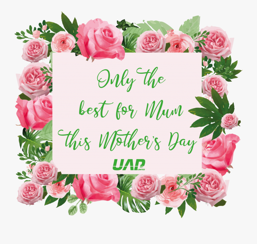 """Mother""""s Day - Mother's Day Tea Promo, Transparent Clipart"""