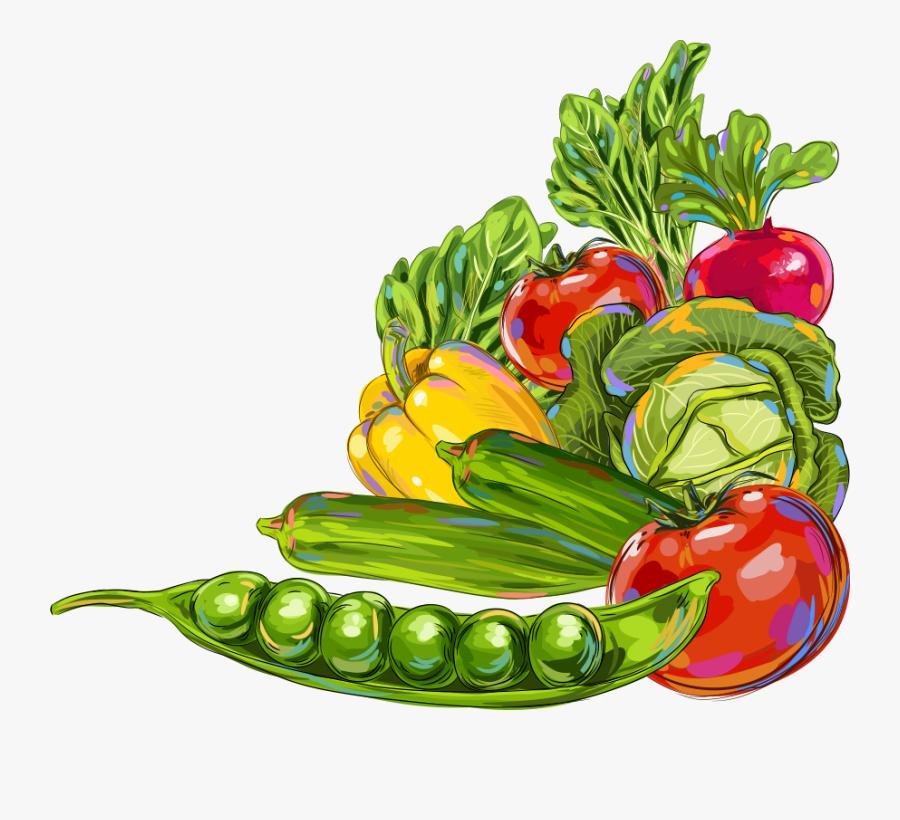 Vegetable Okra Fruit Illustration - Clip Art Fruits And Vegetables Border, Transparent Clipart