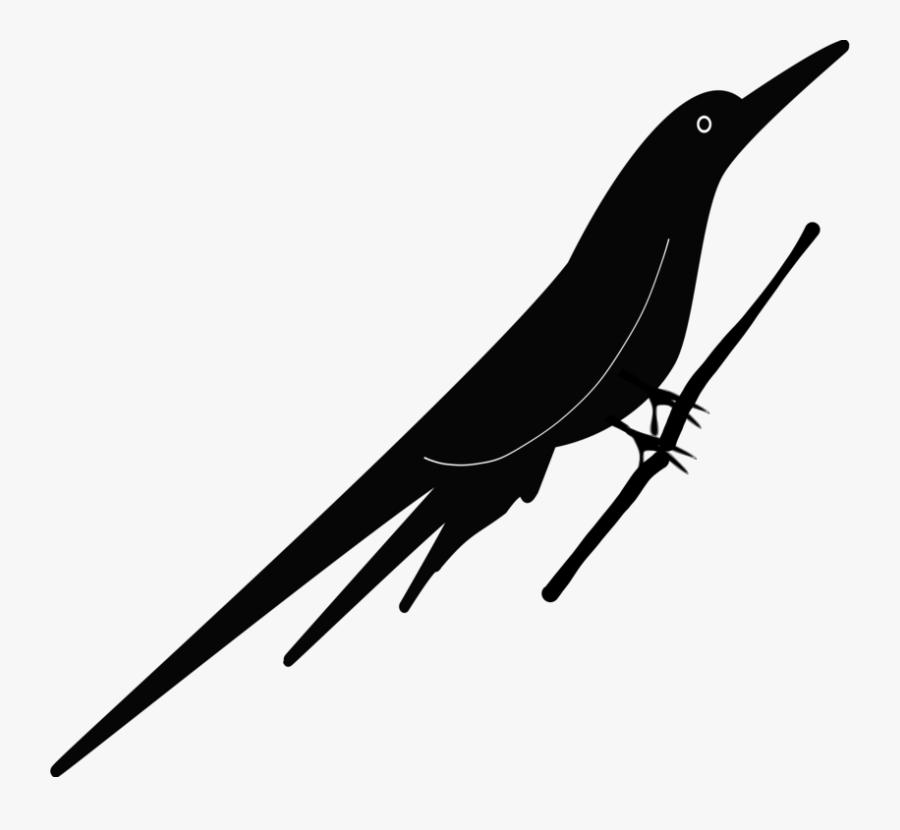 Line,bird,beak - Drawing, Transparent Clipart