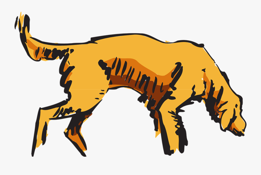 Dog, Pet, Animal, Curious, Hunting, Sniffing, Canine - Dog Sniffing .png, Transparent Clipart
