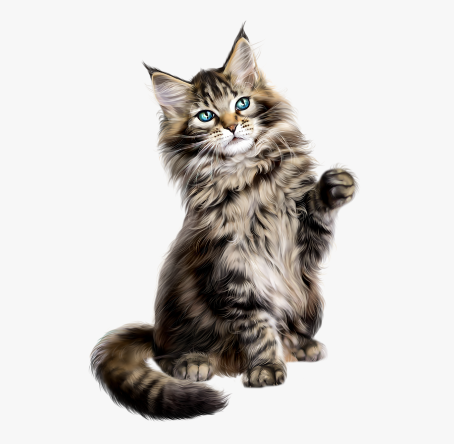 Collection Of Free Vector Cat Persian - Cat Maine Coon Png, Transparent Clipart