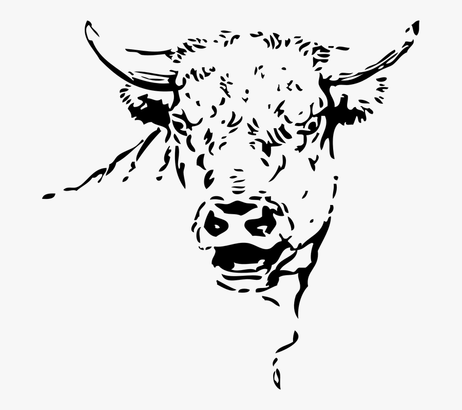 Transparent Cow Face Clipart Black And White - Milk Jokes In Hindi, Transparent Clipart