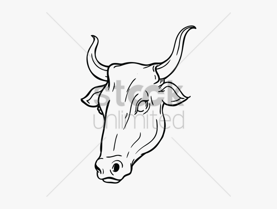Cattle Bull Drawing Black And White Clip Art - Ox Face, Transparent Clipart