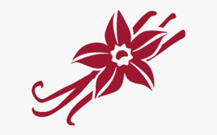 Transparent Seeds Clipart - Vanilla Flower Art Png, Transparent Clipart
