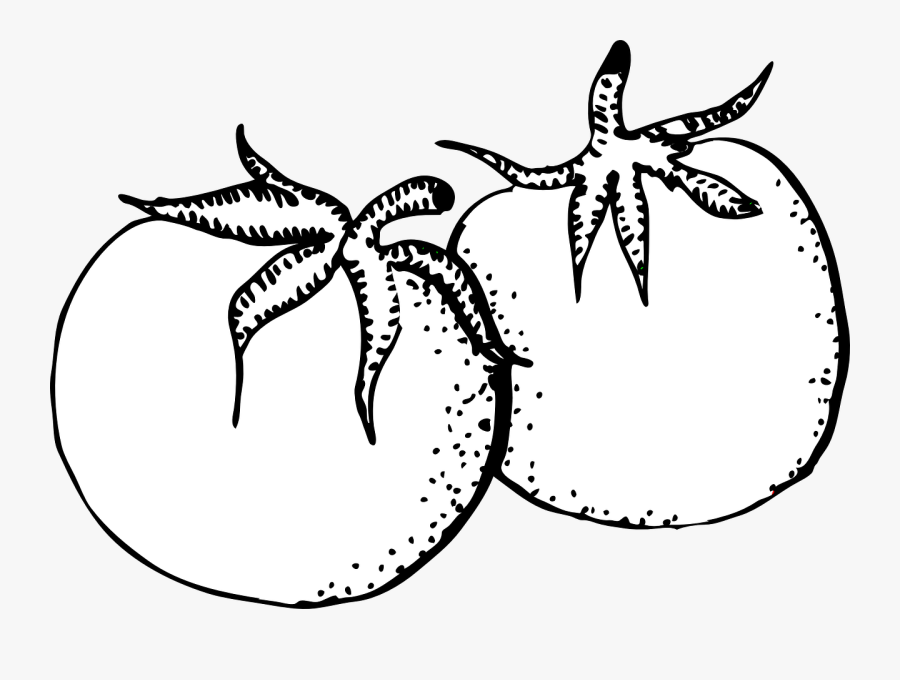 Tomato Clipart Black And White, Transparent Clipart