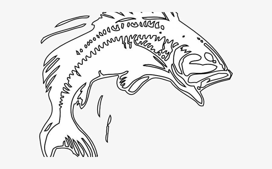 Bass Fish Cliparts Bass Jumping Out From Water Outline Free