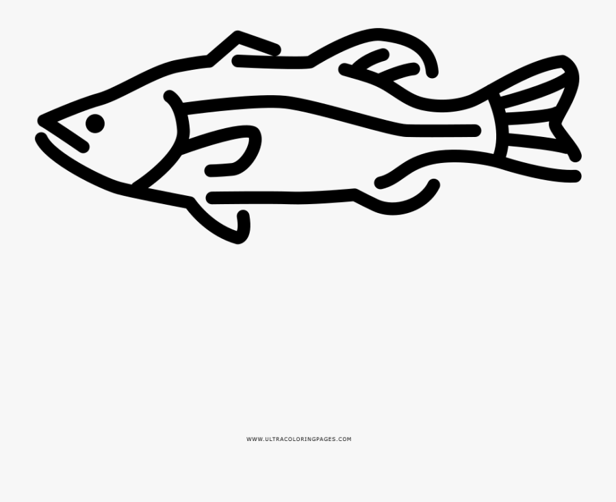 Largemouth Bass Coloring Page - Line Art , Free Transparent Clipart -  ClipartKey