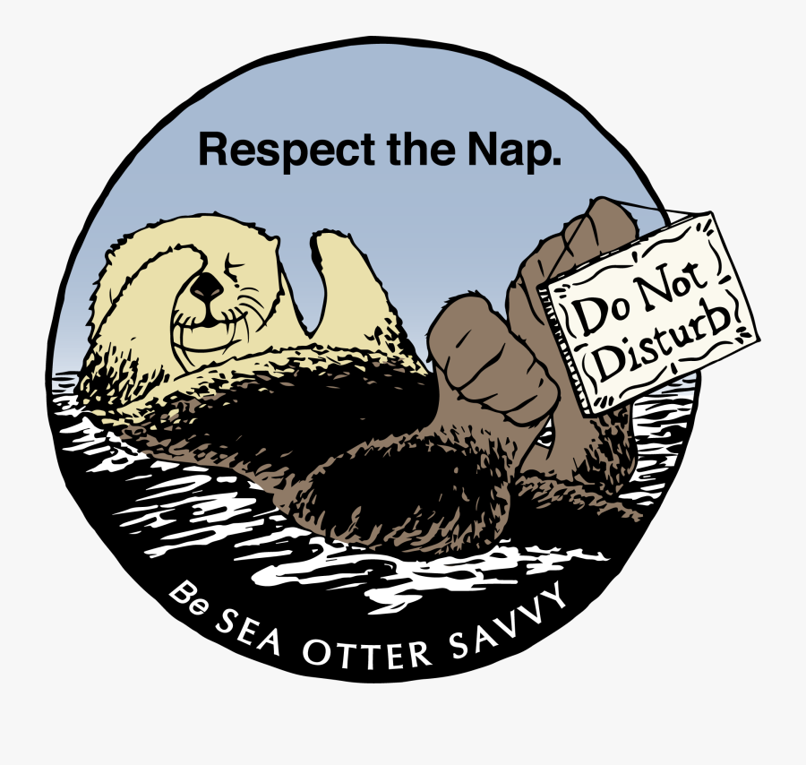 Sea Otter Savvy - Young Pulse Don T You Know Baby, Transparent Clipart