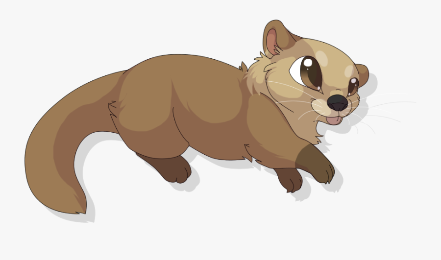 Cute Sea Otter Drawing, Transparent Clipart