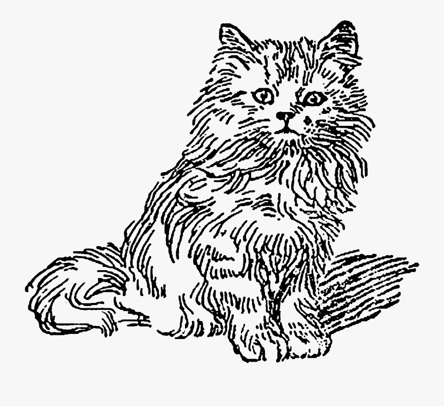 Transparent Cute Kittens Clipart - Domestic Long-haired Cat, Transparent Clipart
