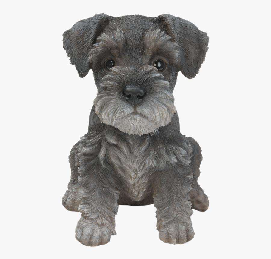 Transparent Miniature Schnauzer Clipart - Schnauzer Puppy Miniature Schnauzer Clipart, Transparent Clipart