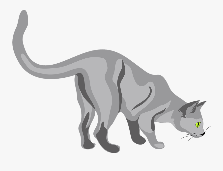 Cat Sniffing The Ground, Transparent Clipart