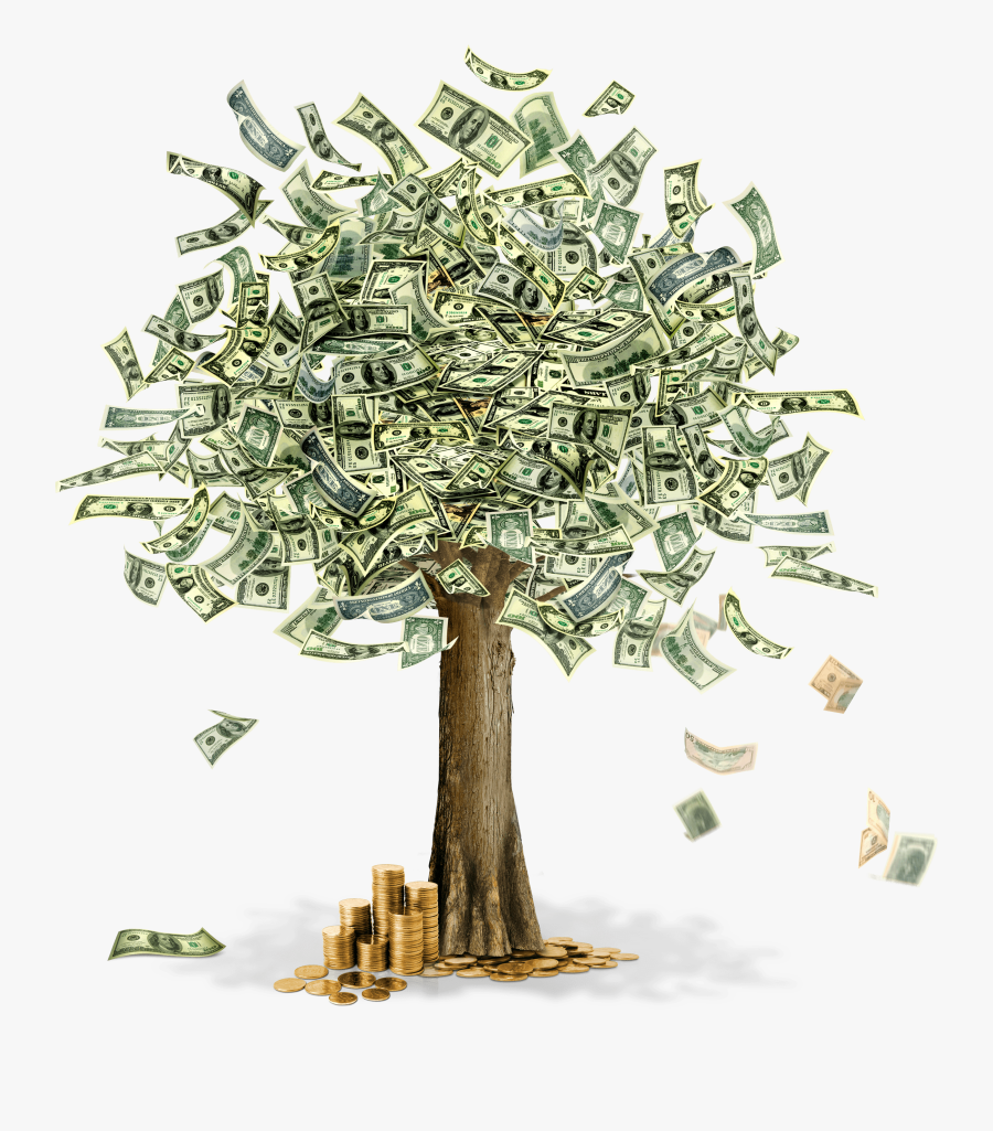 Clipart Flower Money - Money Tree With 100 Dollars, Transparent Clipart