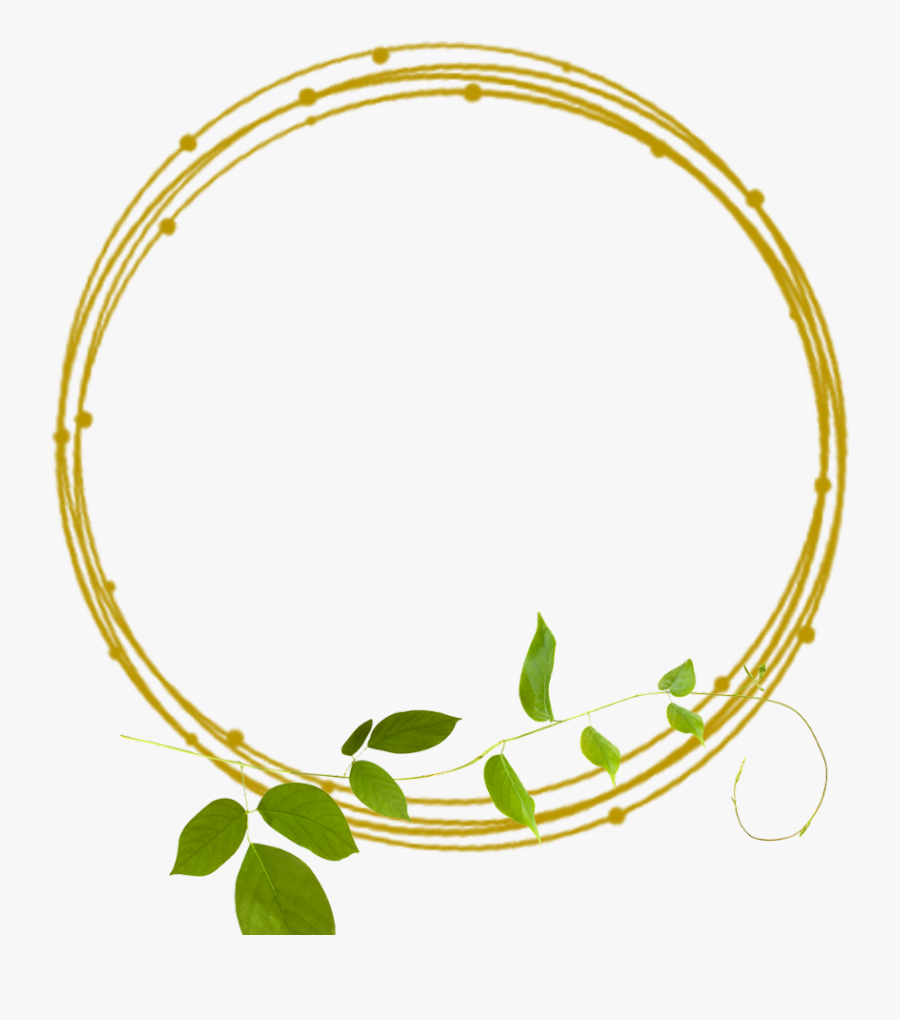 Golden Frame Frames Green Border Borders Leaves Golden Border Lines Png Free Transparent Clipart Clipartkey