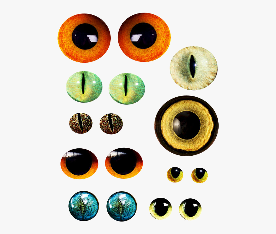 Eyes Cat Clipart Free Best On Transparent Png - Animal Eyes Clipart Png, Transparent Clipart