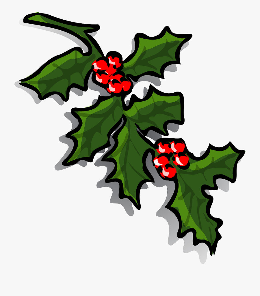 Transparent Holly Berries Png - Christmas Holly Clip Art, Transparent Clipart
