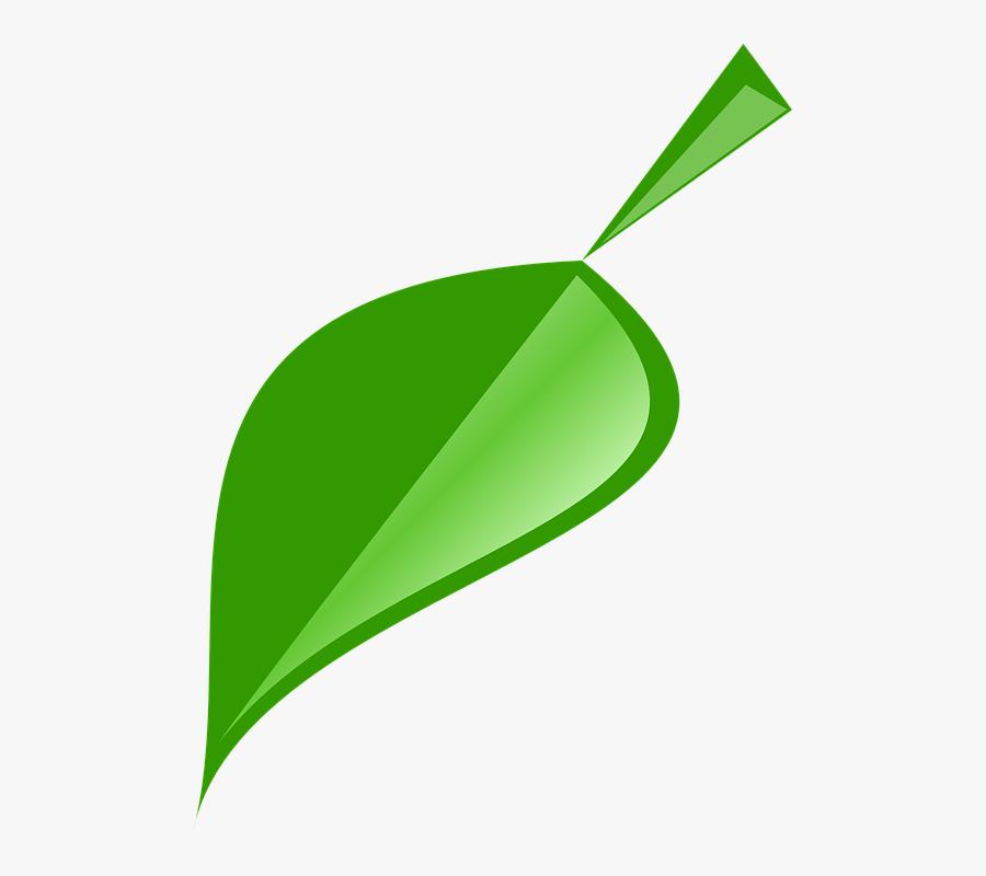 Leaf, Green, Nature, Plant, Natural, Spring - Single Neem Leaf Logo, Transparent Clipart