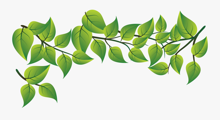 Green Leaves Vector Png - Green Leaves Png Vector, Transparent Clipart
