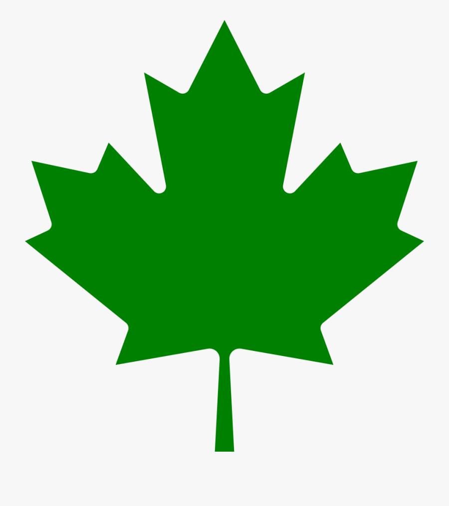 221 × 240 Pixels - Green Canadian Maple Leaf, Transparent Clipart