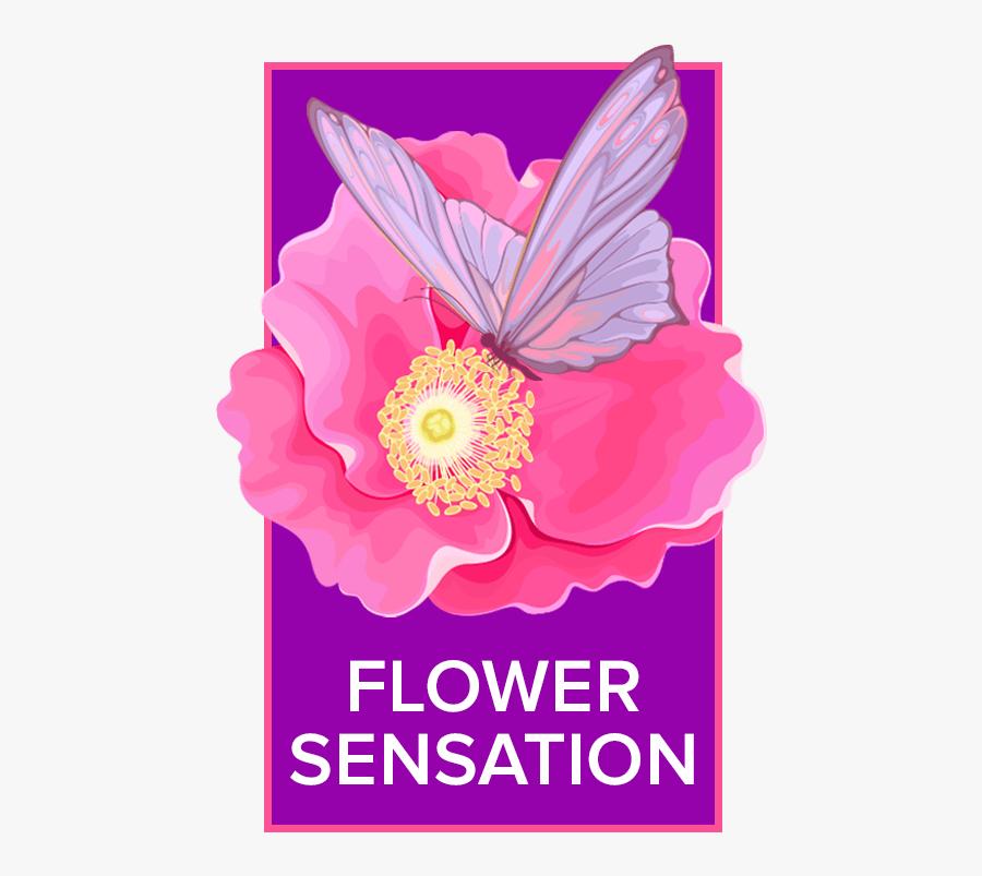 Chula Vista, Ca Florist - Chester Bennington 1976 2017, Transparent Clipart