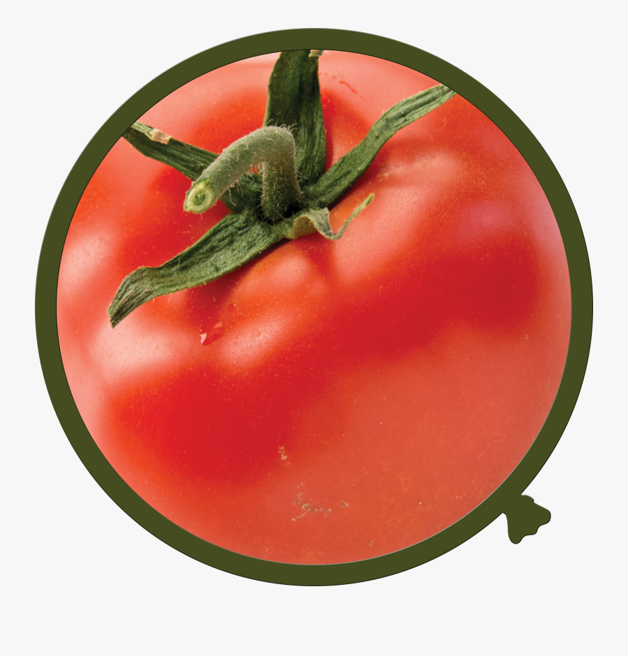 Fruit And Vegetable Photo Wall Decals - Tomato, Transparent Clipart