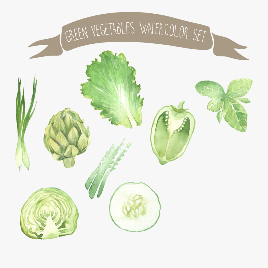 Painting Vegetable Drawing Illustration - Background Drawing Of Vegetables, Transparent Clipart