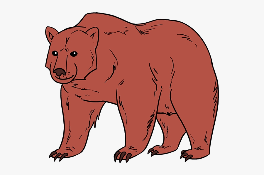 Easy Sun Bear Clipart Realistic Brown Drawing Free - Draw A Brown Bear, Transparent Clipart